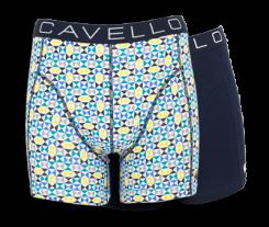 cavello1