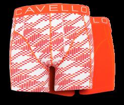 cavello3