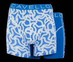 cavello2